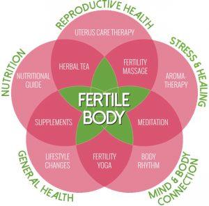 fertile body model