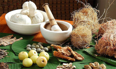 malay traditional medicines
